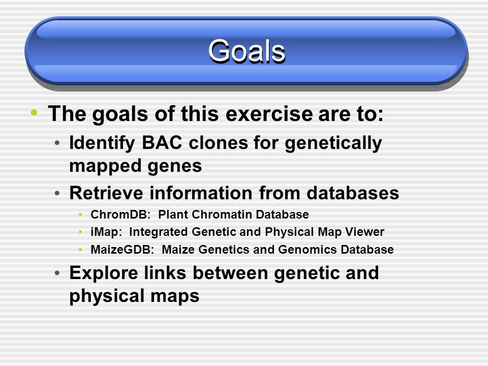 Goals The goals of this exercise are to: Identify BAC clones for genetically mapped genes Retrieve information from databases ChromDB: Plant Chromatin Database iMap: Integrated Genetic and Physical Map Viewer MaizeGDB: Maize Genetics and Genomics Database Explore links between genetic and physical maps