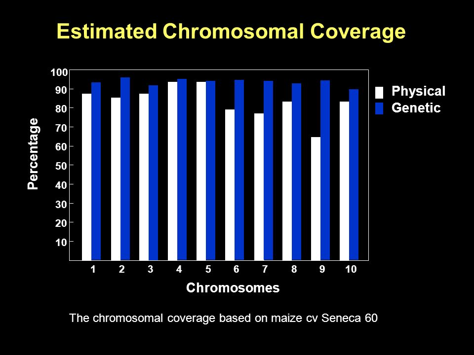 Percentage Chromosomes Estimated Chromosomal Coverage The chromosomal coverage based on maize cv Seneca 60 Physical Genetic