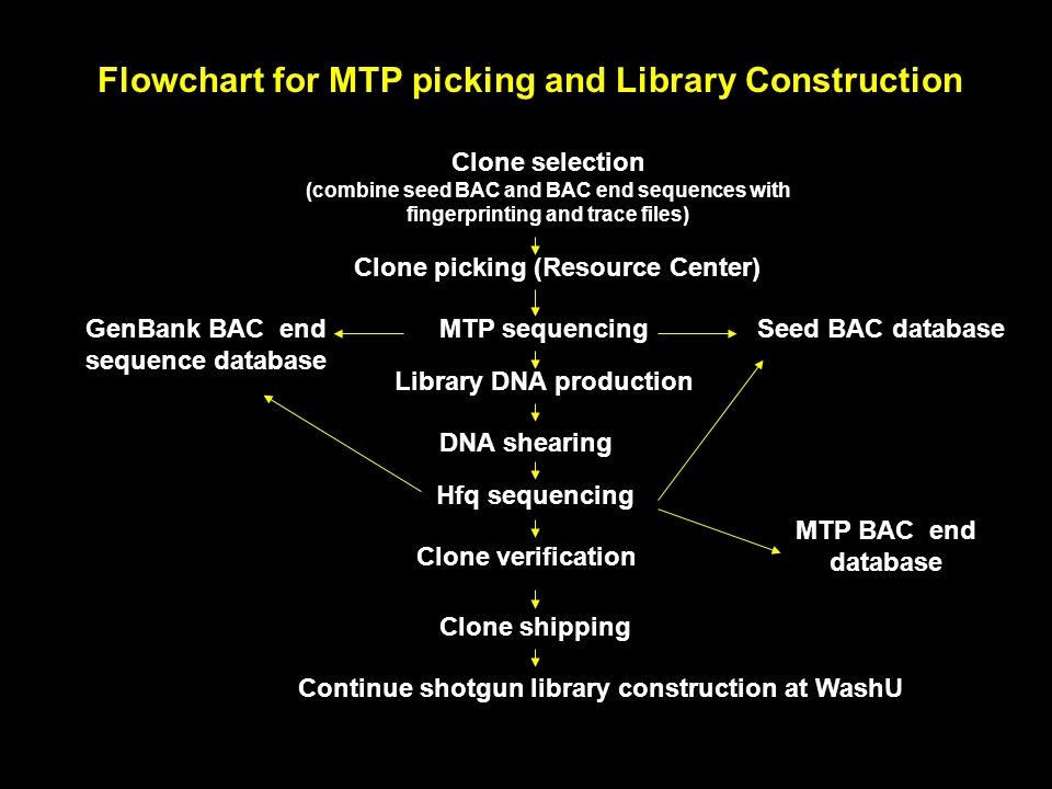 Flowchart for MTP picking and Library Construction Clone selection (combine seed BAC and BAC end sequences with fingerprinting and trace files) Clone