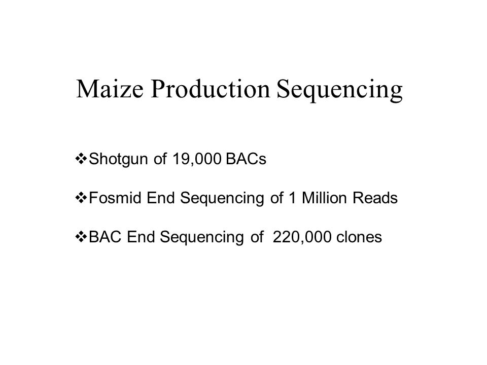 Maize Production Sequencing Shotgun of 19,000 BACs Fosmid End Sequencing of 1 Million Reads BAC End Sequencing of 220,000 clones