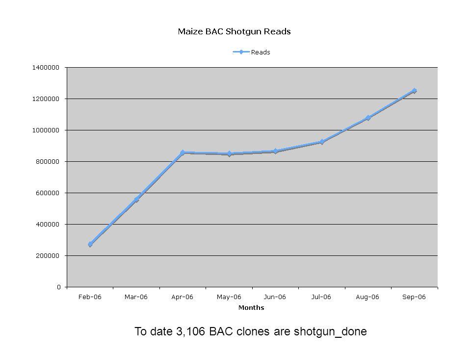 To date 3,106 BAC clones are shotgun_done
