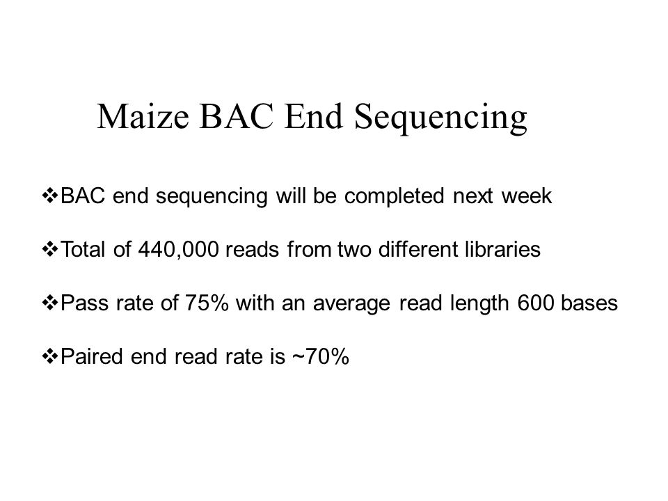 Maize BAC End Sequencing BAC end sequencing will be completed next week Total of 440,000 reads from two different libraries Pass rate of 75% with an a