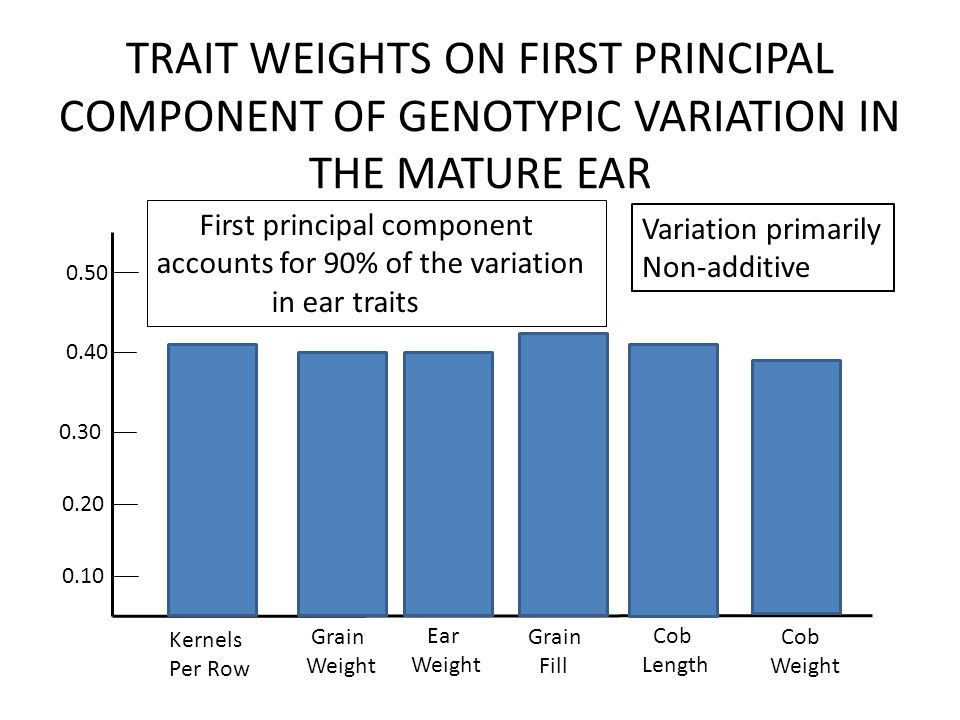 TRAIT WEIGHTS ON FIRST PRINCIPAL COMPONENT OF GENOTYPIC VARIATION IN THE MATURE EAR Kernels Per Row Grain Weight Ear Weight Grain Fill Cob Length Cob Weight First principal component accounts for 90% of the variation in ear traits Variation primarily Non-additive