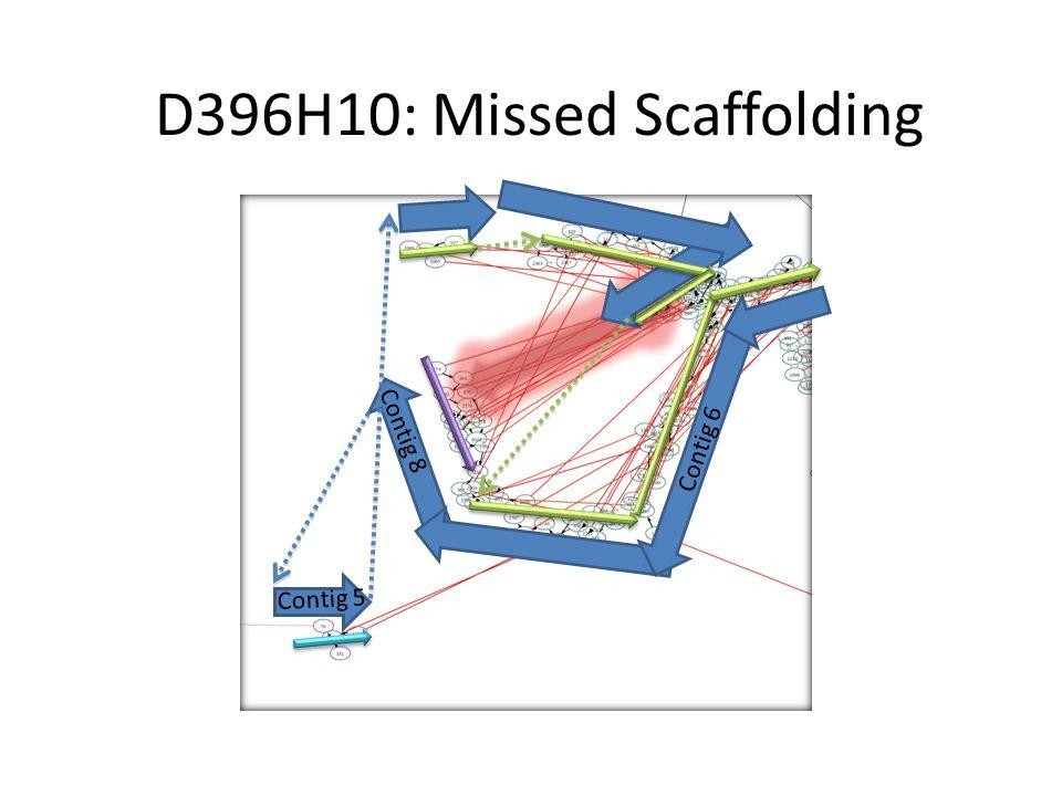 D396H10: Missed Scaffolding Contig 6 Contig 8 Contig 5