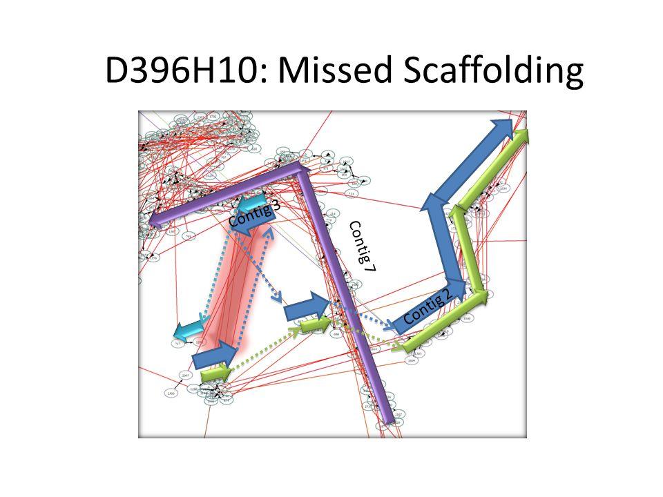 D396H10: Missed Scaffolding Contig 7 Contig 2 Contig 3