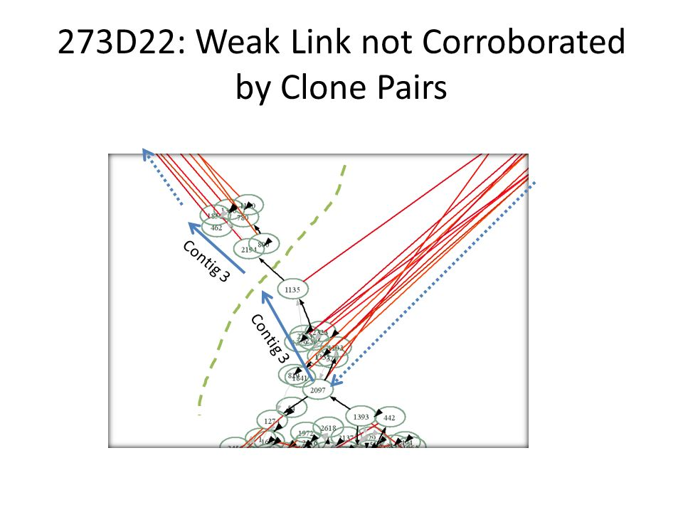 273D22: Weak Link not Corroborated by Clone Pairs Contig 3