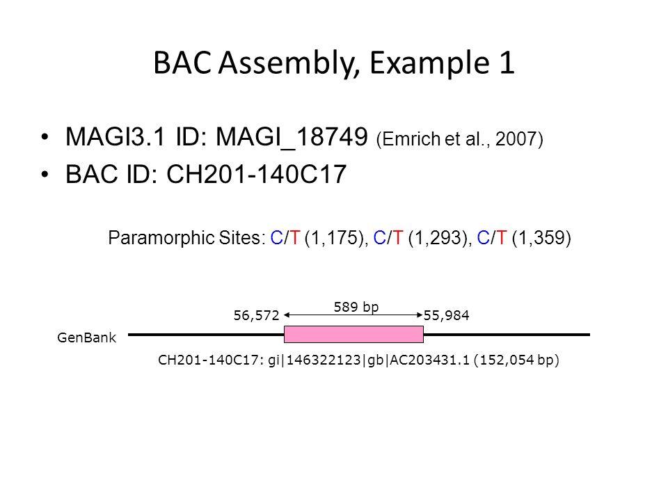BAC Assembly, Example 1 MAGI3.1 ID: MAGI_18749 (Emrich et al., 2007) BAC ID: CH201-140C17 Paramorphic Sites: C/T (1,175), C/T (1,293), C/T (1,359) CH201-140C17: gi|146322123|gb|AC203431.1 (152,054 bp) GenBank 56,57255,984 589 bp