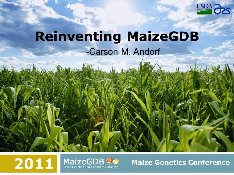 Reinventing MaizeGDB Maize Genetics Conference -Carson M. Andorf 2011