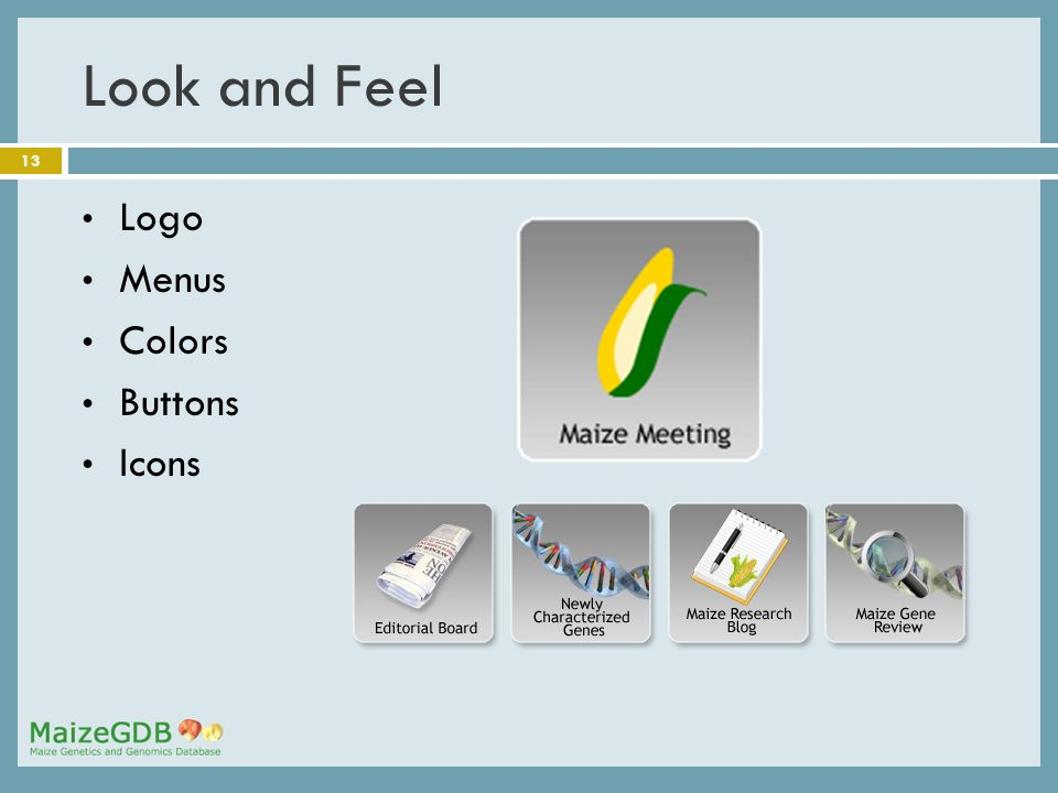 13 Look and Feel Logo Menus Colors Buttons Icons