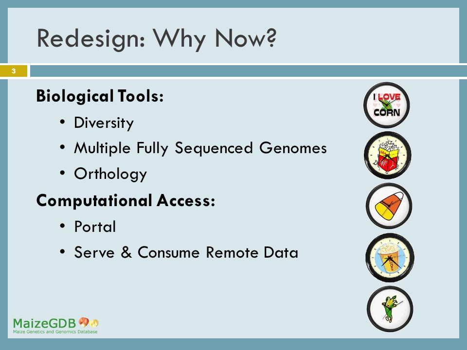 3 Redesign: Why Now? Biological Tools: Diversity Multiple Fully Sequenced Genomes Orthology Computational Access: Portal Serve & Consume Remote Data