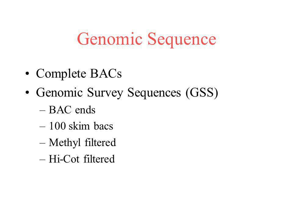 Genomic Sequence Complete BACs Genomic Survey Sequences (GSS) –BAC ends –100 skim bacs –Methyl filtered –Hi-Cot filtered