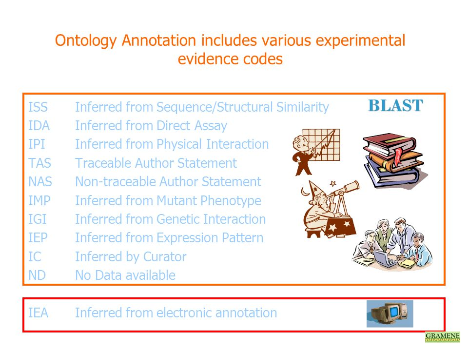 Ontology Annotation includes various experimental evidence codes ISSInferred from Sequence/Structural Similarity IDAInferred from Direct Assay IPIInfe
