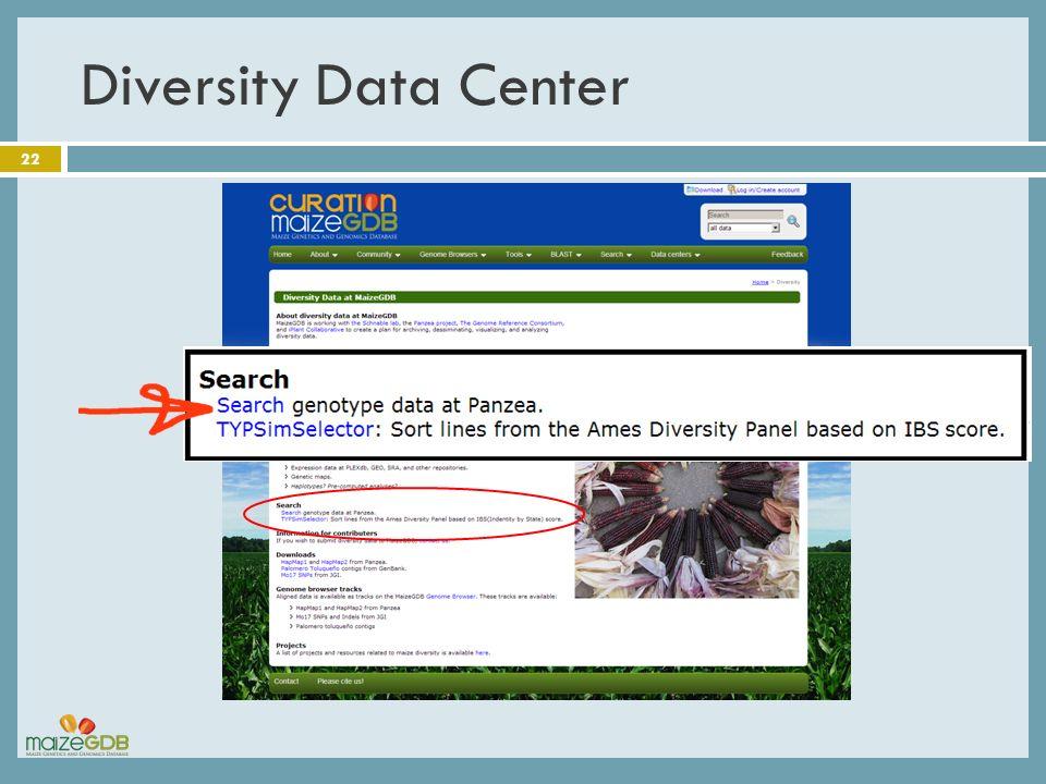 Diversity Data Center 22