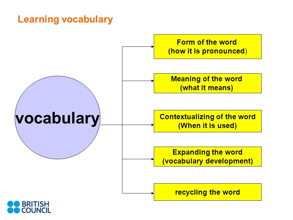 Learning vocabulary vocabulary Meaning of the word (what it means) Form of the word (how it is pronounced) Contextualizing of the word (When it is used) Expanding the word (vocabulary development) recycling the word