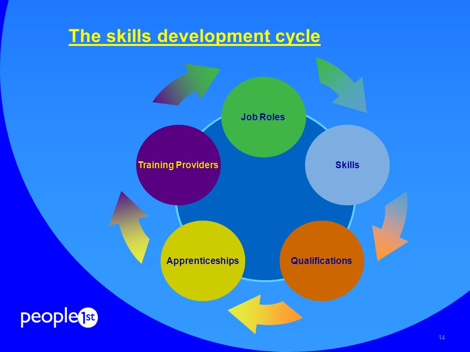 14 The skills development cycle Job Roles Skills Apprenticeships Training Providers Qualifications