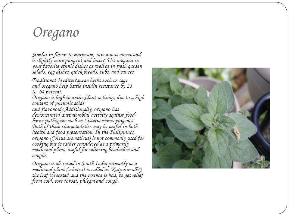 Oregano Similar in flavor to marjoram, it is not as sweet and is slightly more pungent and bitter. Use oregano in your favorite ethnic dishes as well
