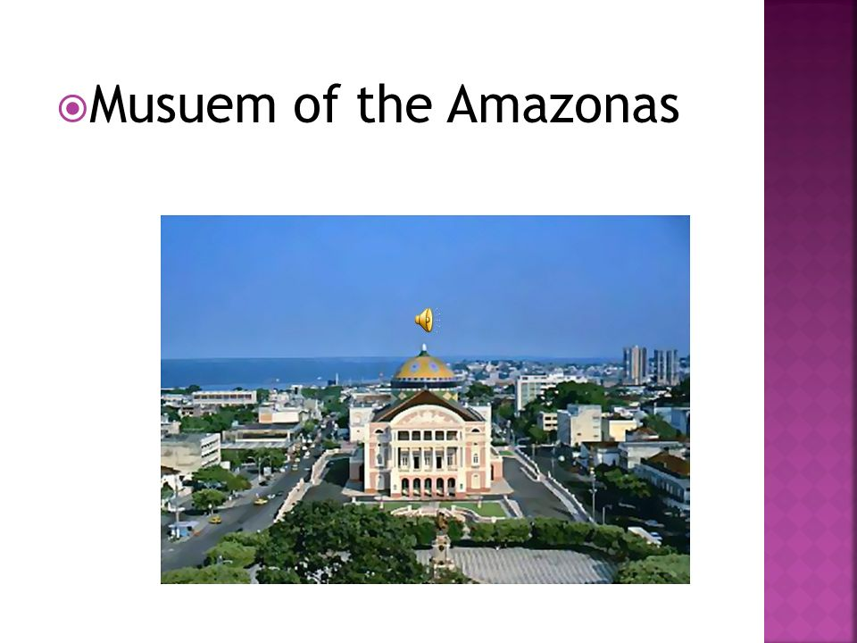 Musuem of the Amazonas