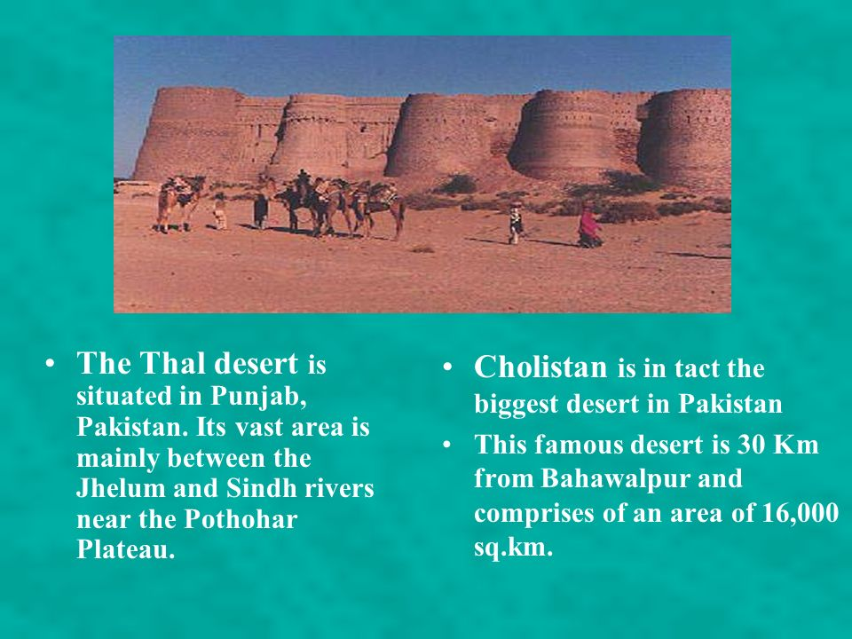 MAJOR DESERTS The arid Thar Desert is the world's seventh largest desert and is without doubt the most inhospitable eco-region in the Indo-Pacific reg