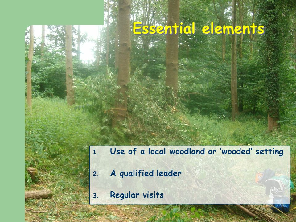 Essential elements 1. Use of a local woodland or wooded setting 2.