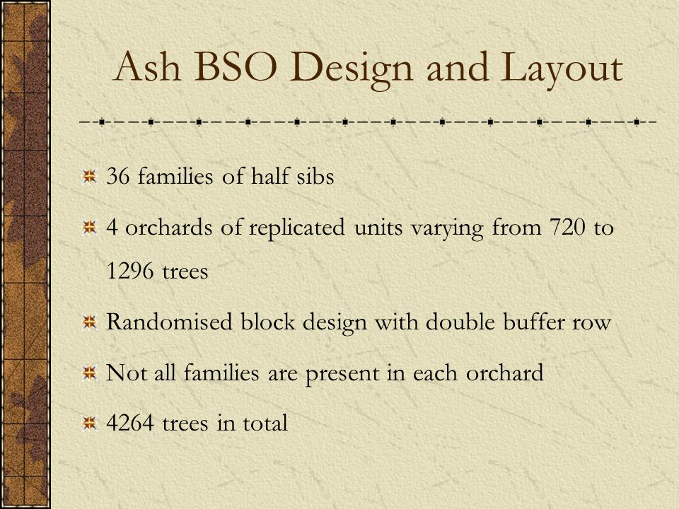 Ash BSO Design and Layout 36 families of half sibs 4 orchards of replicated units varying from 720 to 1296 trees Randomised block design with double buffer row Not all families are present in each orchard 4264 trees in total