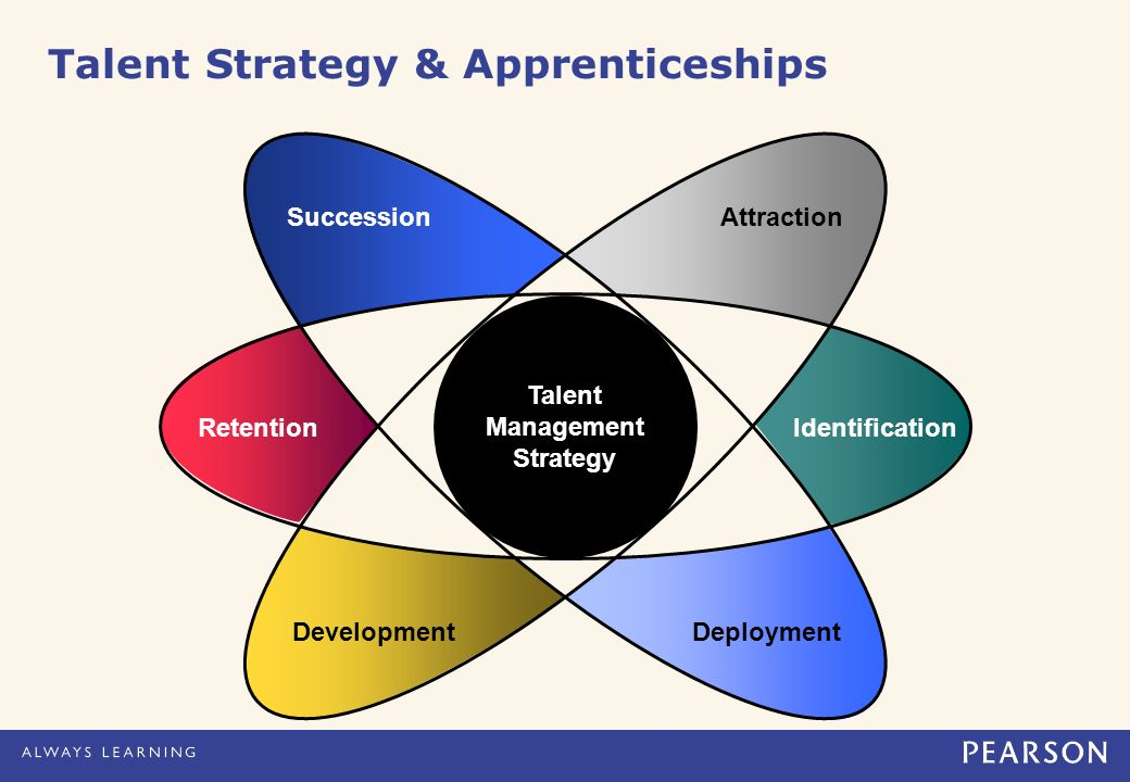 Talent Management Strategy SuccessionAttraction DevelopmentDeployment Retention Identification Talent Strategy & Apprenticeships
