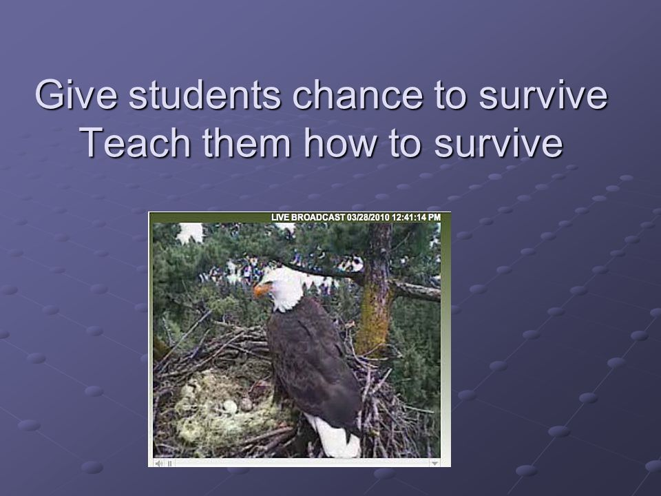 Give students chance to survive Teach them how to survive