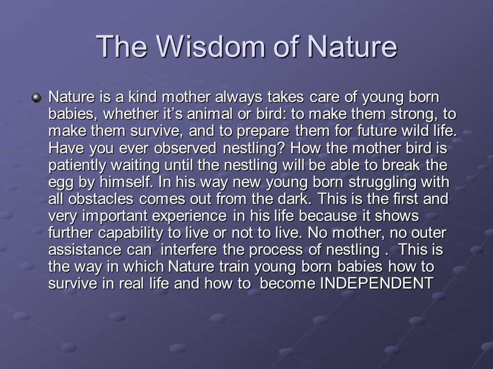 The Wisdom of Nature Nature is a kind mother always takes care of young born babies, whether its animal or bird: to make them strong, to make them survive, and to prepare them for future wild life.