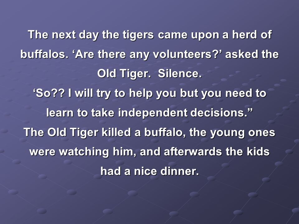 The next day the tigers came upon a herd of buffalos.