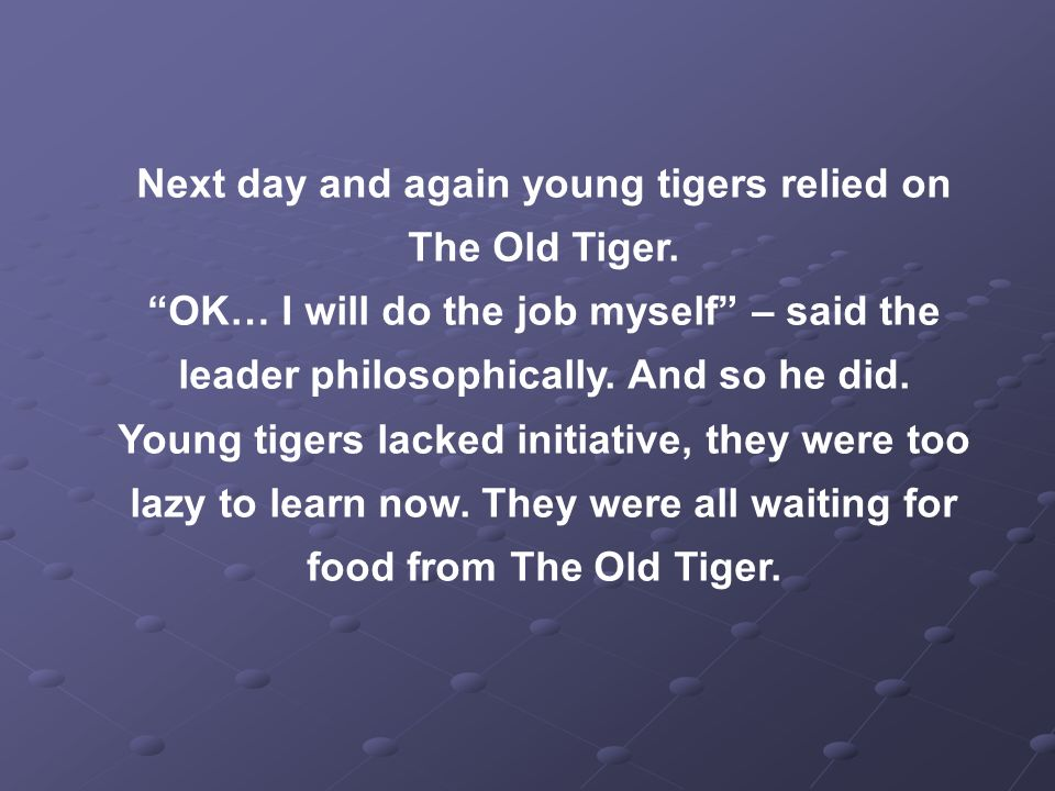 Next day and again young tigers relied on The Old Tiger.