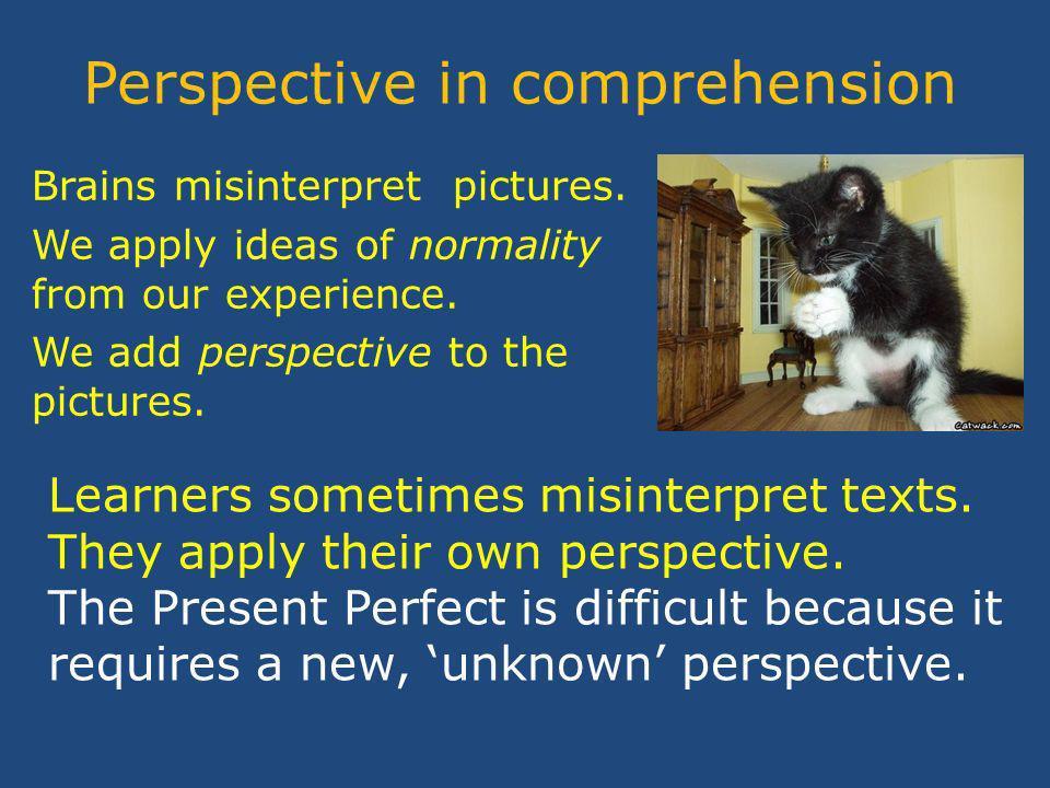 Perspective in comprehension Brains misinterpret pictures.