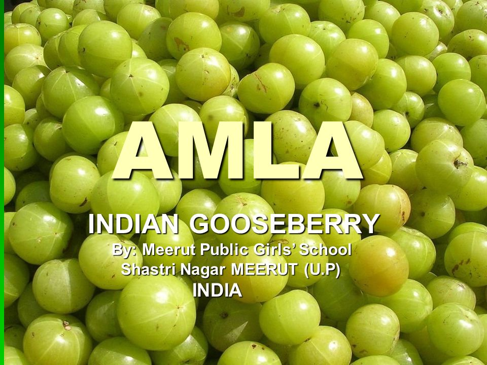 ABOUT AMLA ABOUT AMLA Amla is a medium sized deciduous plant Amla is a medium sized deciduous plant It grows to the height of 8-18 meters It grows to the height of 8-18 meters Its flower is yellow greenish in color and the fruit is spherical pale yellow Its flower is yellow greenish in color and the fruit is spherical pale yellow The average weight of the fruit is 60-70 gm The average weight of the fruit is 60-70 gm Grows in light as well as heavy soils Grows in light as well as heavy soils Grows under tropical conditions Grows under tropical conditions Requires proper sunlight Requires proper sunlight Irrigated during the monsoon season Irrigated during the monsoon season