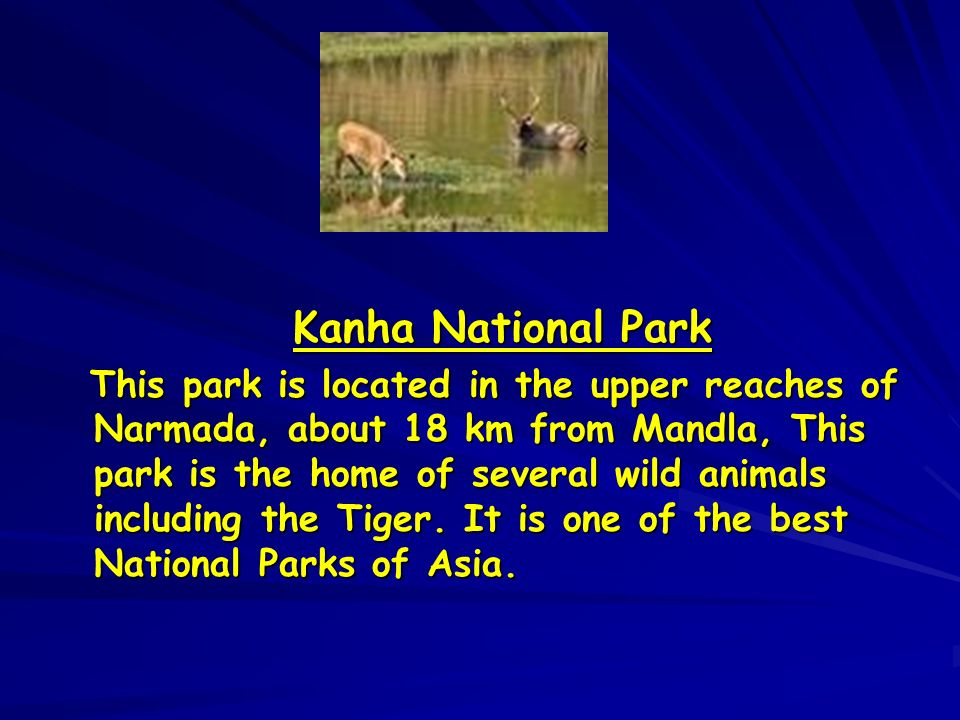 Kanha National Park Kanha National Park This park is located in the upper reaches of Narmada, about 18 km from Mandla, This park is the home of severa