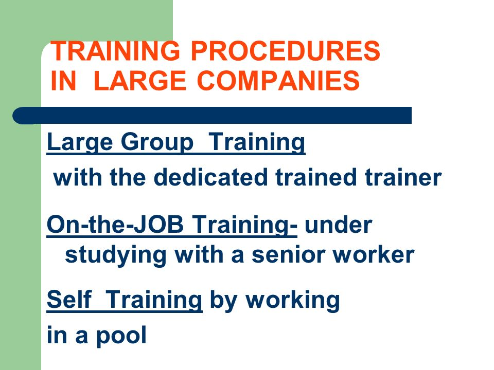 TRAINING PROCEDURES IN LARGE COMPANIES Large Group Training with the dedicated trained trainer On-the-JOB Training- under studying with a senior worker Self Training by working in a pool