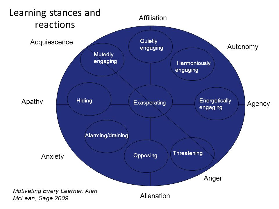 Learning stances and reactions Agency Alienation Affiliation Mutedly engaging Hiding Alarming/draining Threatening Exasperating Energetically engaging Harmoniously engaging Autonomy Apathy Anger Anxiety Acquiescence Opposing Quietly engaging Motivating Every Learner: Alan McLean, Sage 2009