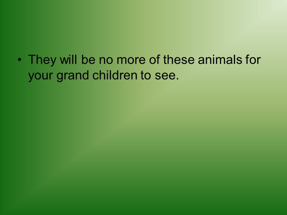 They will be no more of these animals for your grand children to see.