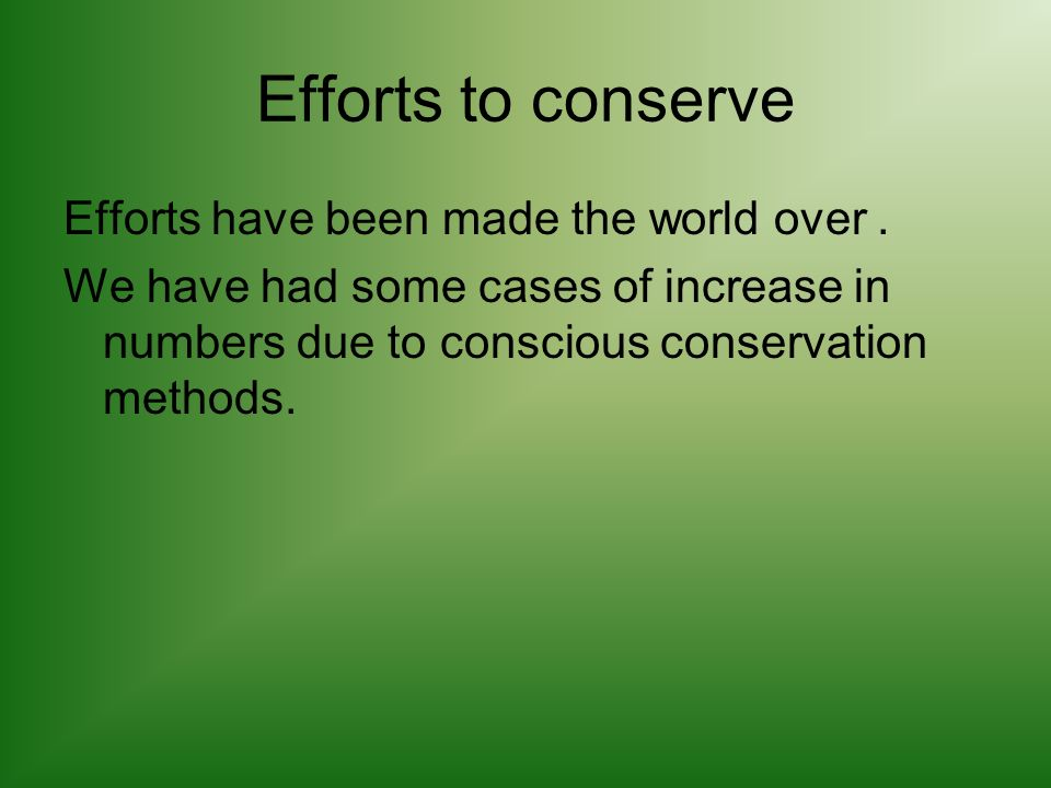 Efforts to conserve Efforts have been made the world over. We have had some cases of increase in numbers due to conscious conservation methods.