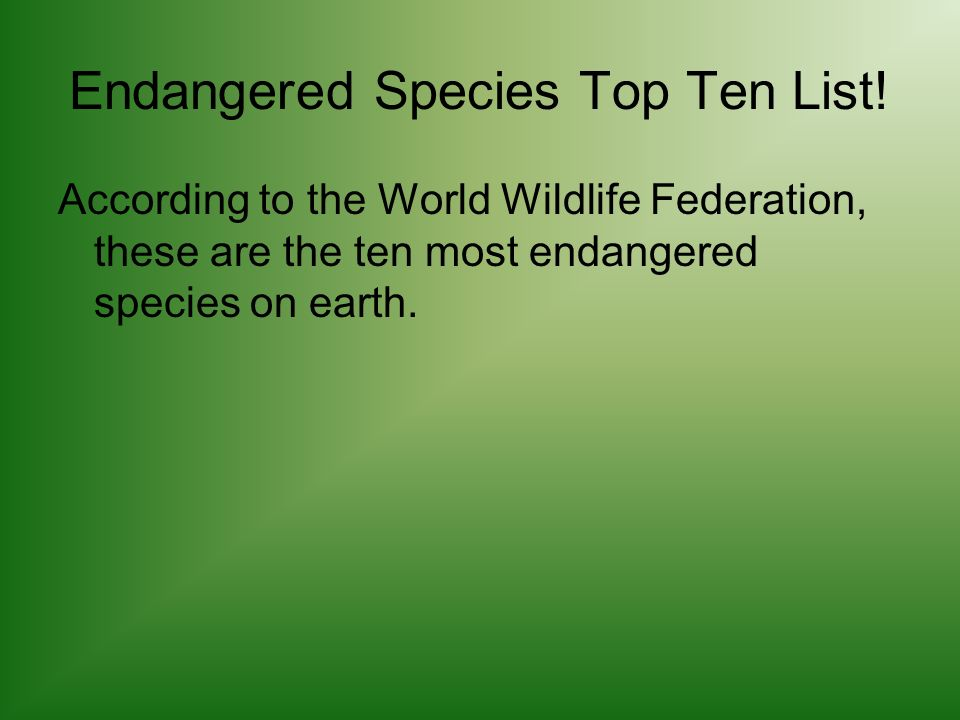 Endangered Species Top Ten List! According to the World Wildlife Federation, these are the ten most endangered species on earth.