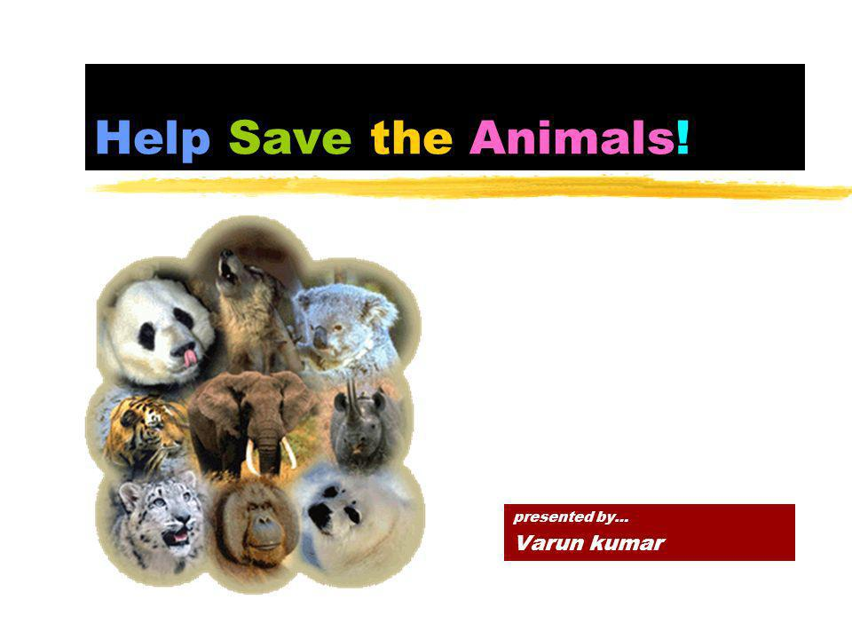 Help Save the Animals! presented by… Varun kumar