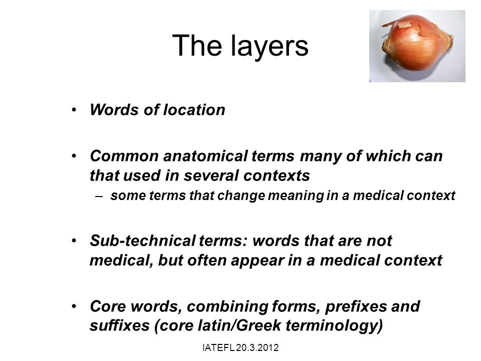 The layers Words of location Common anatomical terms many of which can that used in several contexts –some terms that change meaning in a medical cont