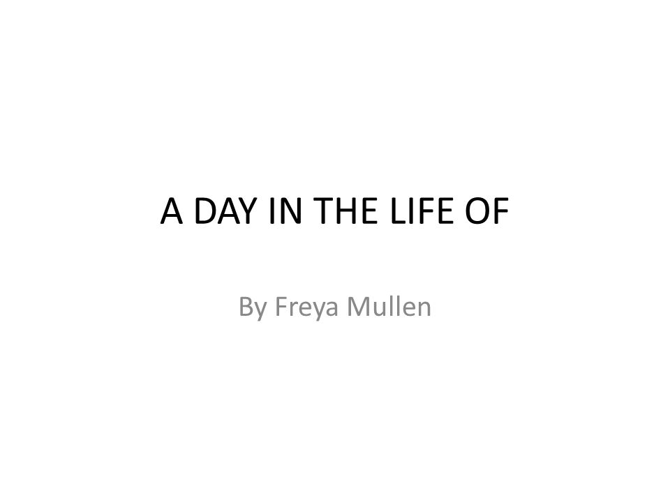 A DAY IN THE LIFE OF By Freya Mullen