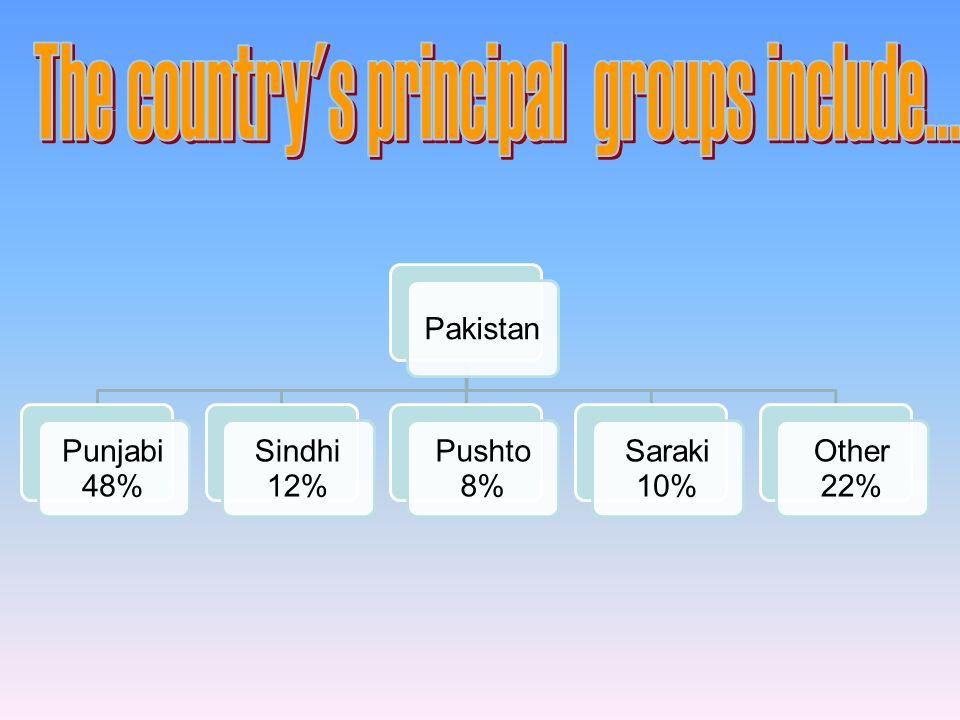 Pakistan Punjabi 48% Sindhi 12% Pushto 8% Saraki 10% Other 22%