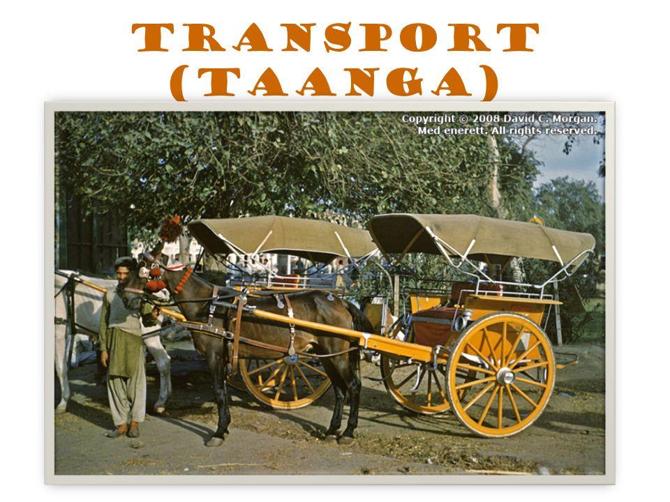 Transport (Taanga)