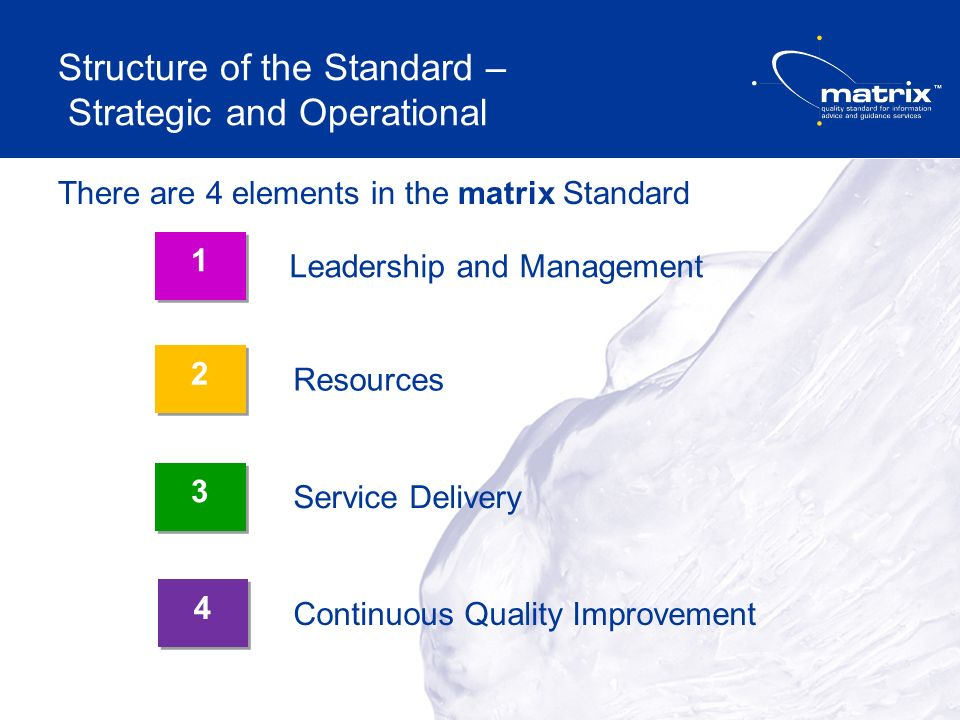 Structure of the Standard – Strategic and Operational There are 4 elements in the matrix Standard Leadership and Management Service Delivery 1 1 Resources Continuous Quality Improvement 3 3 2 2 4 4