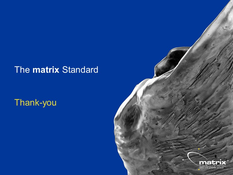 The matrix Standard Thank-you