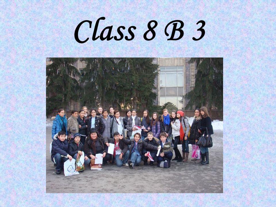 Class 8 B 3