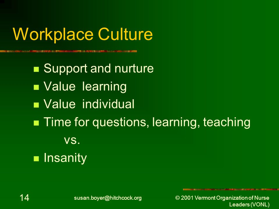 susan.boyer@hitchcock.org © 2001 Vermont Organization of Nurse Leaders (VONL) 14 Workplace Culture Support and nurture Value learning Value individual Time for questions, learning, teaching vs.