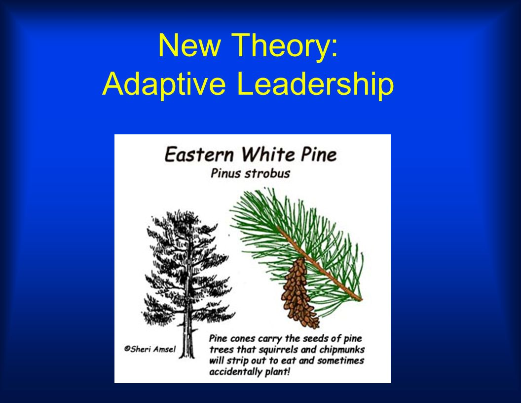 New Theory: Adaptive Leadership