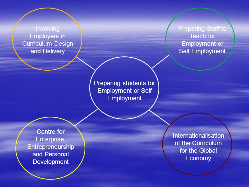 Preparing students for Employment or Self Employment Involving Employers in Curriculum Design and Delivery Preparing Staff to Teach for Employment or Self Employment Centre for Enterprise, Entrepreneurship and Personal Development Internationalisation of the Curriculum for the Global Economy