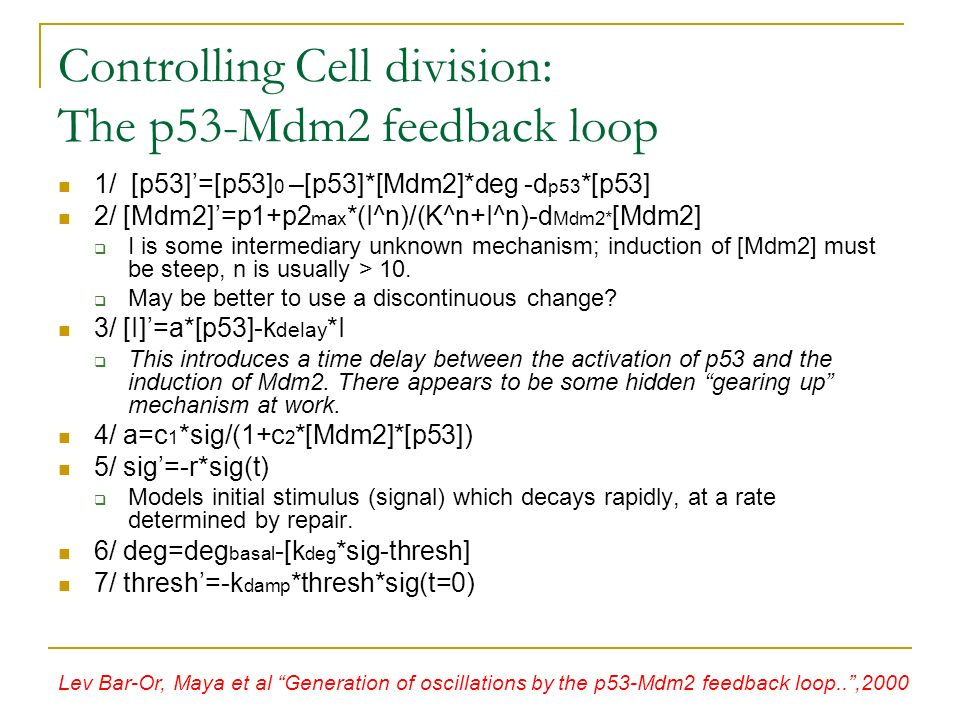 Controlling Cell division: The p53-Mdm2 feedback loop 1/ [p53]=[p53] 0 –[p53]*[Mdm2]*deg -d p53 *[p53] 2/ [Mdm2]=p1+p2 max *(I^n)/(K^n+I^n)-d Mdm2* [Mdm2] I is some intermediary unknown mechanism; induction of [Mdm2] must be steep, n is usually > 10.