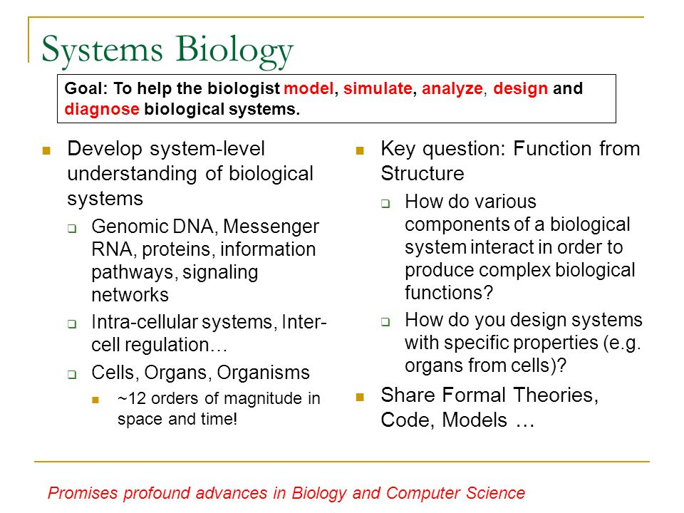 Systems Biology Develop system-level understanding of biological systems Genomic DNA, Messenger RNA, proteins, information pathways, signaling networks Intra-cellular systems, Inter- cell regulation… Cells, Organs, Organisms ~12 orders of magnitude in space and time.